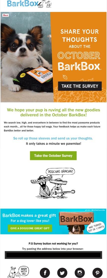 customer-satisfaction-survey-email